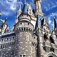 Basil Rabbit visits Disney World