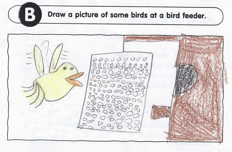 KITTY bird