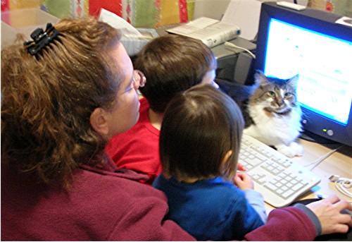Sm_cat_computer