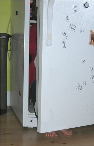 Sm_fridge