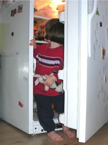 Sm_kitty_fridge_2