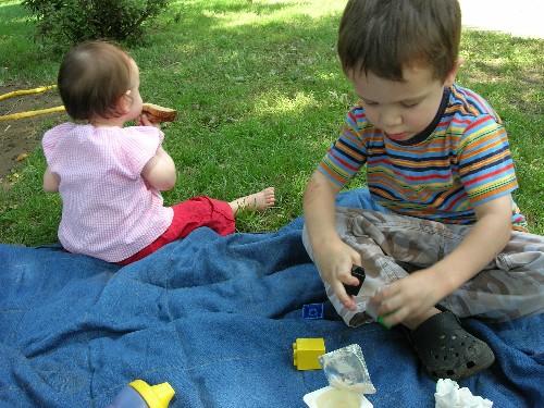Sm_picnic_1